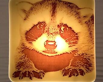 Baby Raccoon Night Light Fused Glass