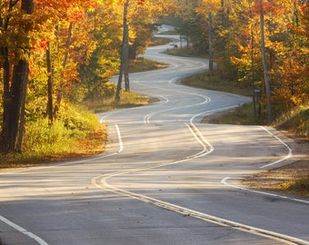 Winding Road photo, Door County picture, INSTANT DOWNLOAD print, digital copy art, printable wall decor, 5x7 8x10 10x10 11x14 12x12 12x18