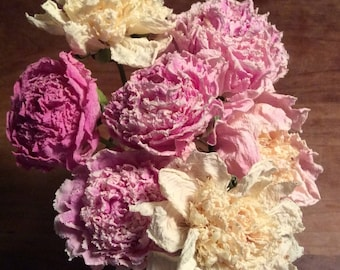 Dry Peony Flowers 10 organic Naturally Dried Hand-picked Mixed Colors to Harmonize