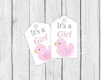 Baby Girl Tags, Pink Chick, It's a Girl, Favor Shower Tags, Gift Wrapping, Set of 10