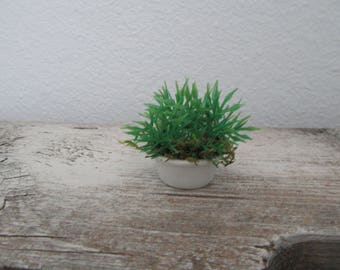 Miniature Fairy Garden Potted Plant in White Porcelain Pot Modern Artificial