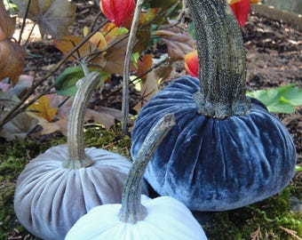 Handmade Plush velvet pumpkins  with real dried stems. 3 Neutral colors: Graphite Gray, White and Champagne