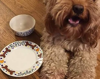 Hand painted ceramic pet Bowl and Plate