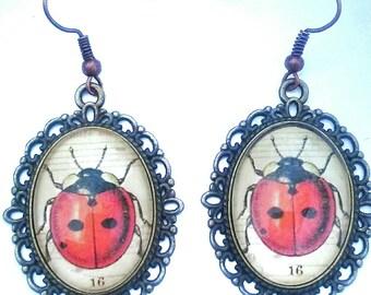 Lady bug earrings ladybug  jewelry insect earrings lady bird jewellery vintage bug earrings earrings ladybug bug earrings bug jewelry insect