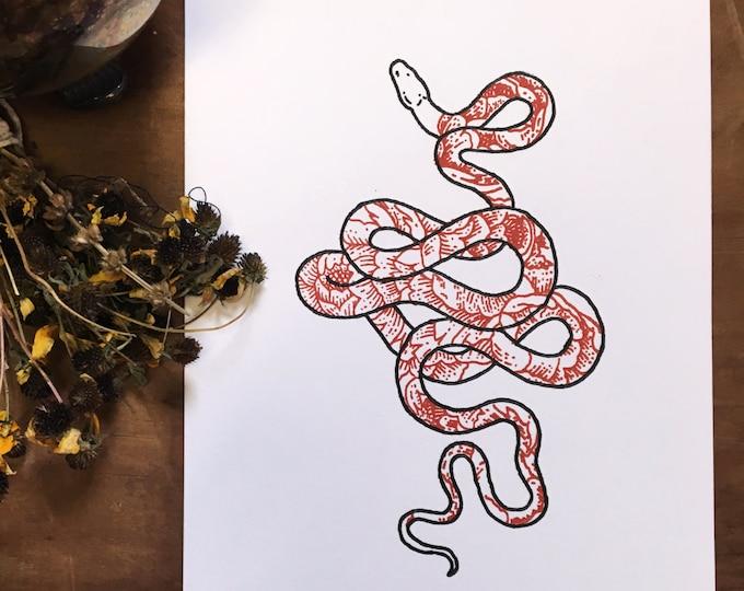 Snake + Peonies Letterpress Print | Botanical Illustration | Floral Drawing | Snake Drawing | Snake Illustration | Snake Art