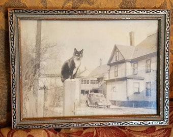 Original 1930's Photograph Sitting Cat Black And White Animal Photo 1932 Ford Coupe Large House Vintage Period Wood Frame
