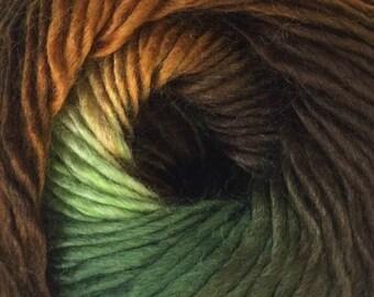 Bonita Yarns - Merino Dream Rainforest Shades