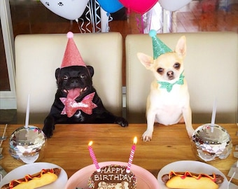 Dog Party Hat | Dog Hat and Bowtie | Dog Party | Dog Accessories | Dog Party