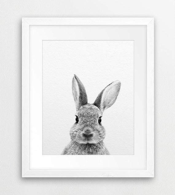 Rabbit print rabbit photography bunny print black white animal print rabbit wall decor woodlands animal nursery decor printable art