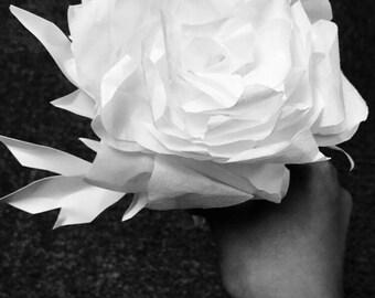 Long Stem Coffee Filter Roses