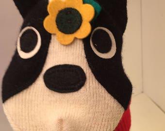 Boston Terrier Luna Handpuppet