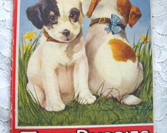Vintage Childrens Book ~ My Twin Puppies ~ Edna Groff Deihl ~ Sam'L Gabriel Sons & Co. ~ 1924