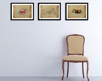 DUCATI, Set of 3 Prints, 11.5x16, Original Drawings Prints, 1973, 2007, 2013
