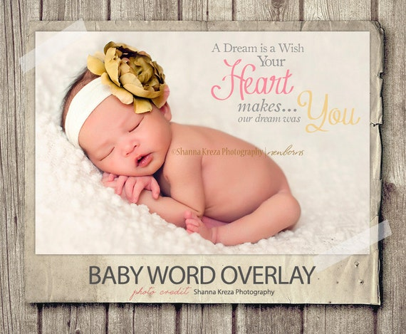 Word overlay baby newborn phrase photo overlay text photo