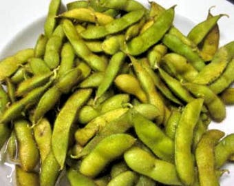 Edamame Organic Shirofumi Soybeans 10 seeds