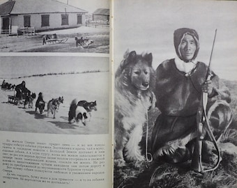 Rare Vintage Soviet Dog Book – Russian Dogs and Wolves – Vintage Photos Images of Dogs