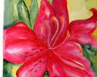 Azalea watercolor painting, watercolor flowers, Small Floral Wall Art 5 x 7, original flower watercolor SharonFosterArt, SharonFosterArt