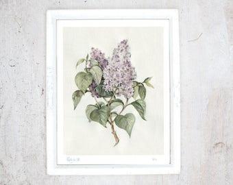 Print Lilac | Illustration Art Print | Poster | Rustic vintage botanical poster | Spring flower | Art kitchen, Veranda, Living room