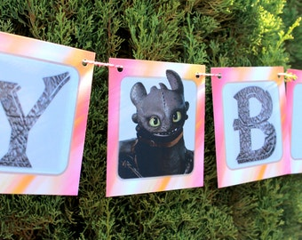 Personalized Girly How to Train Your Dragon-inspired Birthday Set- Party Decor - Celebration - Photo Shoot -Custom