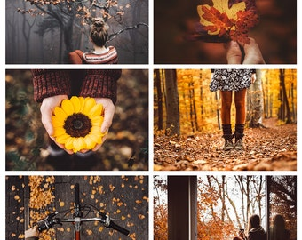 postcard set 'autumn memories' –today and tomorrow only: 2 for 1