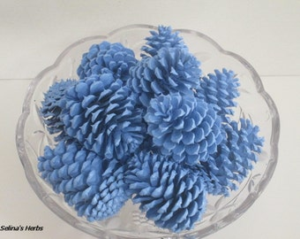 Light Blue Pine Cone, Painted Blue Cone, Centerpiece Cone, Pinecone Arrangement, Wedding Pine Cone, Shower Pine Cone, Rustic Cone Decor, 12