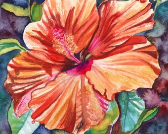 Tropical Hibiscus 5 8x10 print from Kauai Hawaii orange hot pink green