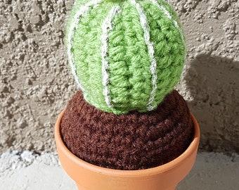 Crochet Barrel Cactus with White Flower 2