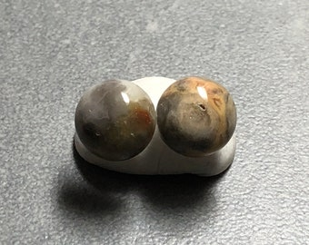 10mm Crazy Lace Agate Gemstone Post Earrings with Sterling Silver