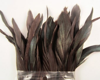 30 Natural Peacock black  Schlappen Feathers 7 to 9 inches