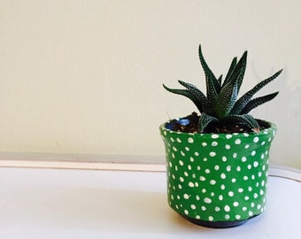 small ceramic plant pot