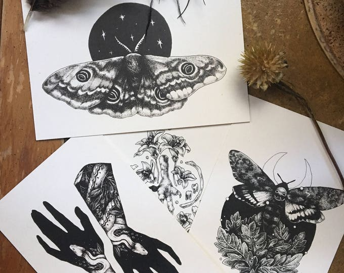 Pack of Four Postcards