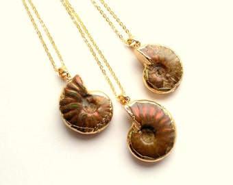 CLEARANCE Ammonite Necklace Fossil Necklace Iridescent Ammonite Swirl Necklace Snail Necklace Amonite Jewelry Fossil Jewelry Bohemian