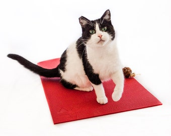 Gift for Cat and Yoga Lovers, Red Yoga Cat Mat, Red Holiday Gift, Cat Toy, Scratcher and Catnip Toy