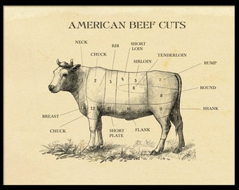 American Beef Cuts Etching Print Vintage Style Cow Print ideal for home kitchen restaurant perfect gift for a foodie