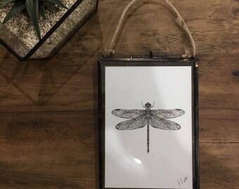 Dragonfly Illustration Print