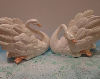 Set of two white swans