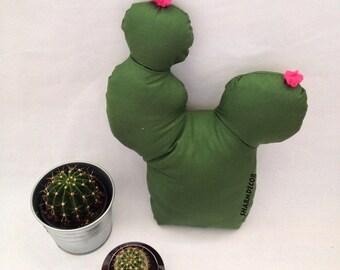 Pillows,Cactus decor pillow, Arizona cacti,Cactus Cuddle,Green Cactus,Desert decor,Cactus,Cactus Decorations,Southwestern Decor, Prickly