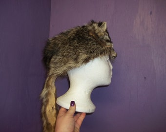 Real raccoon tanned taxidermy fur hide skin pelt mountain man hat cap Native American pow-wow dance regalia rendezvous