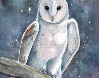 Barn Owl Wildlife Watercolor Fine Art Print by Molly Harrison 11 x 17