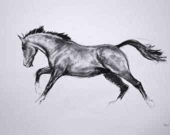 SALE Original movement and energy based equine charcoal horse sketch drawing 'Lines I' by H Irvine