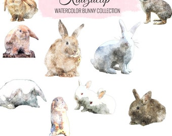 Watercolor Bunny Collection - Commercial and Personal Use