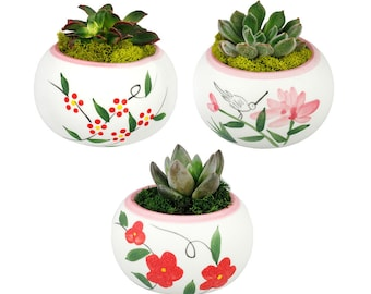 Flower Succulent Planter Pots – Hummingbird, Red flowers, Red and Yellow Flowers