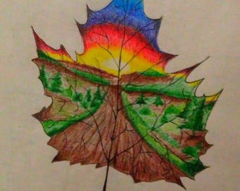 Maple Leaf drawing, nature drawing, realism, pencils drawing, sunshine