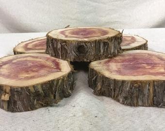 5 Cedar Wood Slices