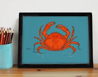 Crab Art Print - crab decor - crab - crab print - sea life art - coastal decor - beach art - sea life print - seafood - nautical kitchen