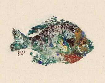 Bluegill - Gyotaku Fish Rubbing - Limited Edition Print (11 x 8)