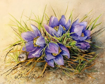 Crocus Grouping with Snail, ORIGINAL watercolor painting 8x10 wildflowers purple flowers nature spring by Christy Sheeler