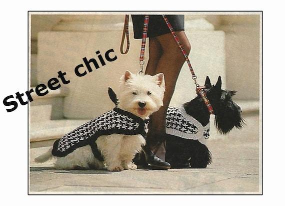 Dog Coat Knitting Pattern For Westie Dog Pdf