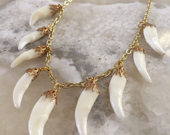 Coyote Teeth Charm Necklace