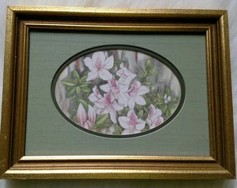 White and pink Lilly framed wall art with green mats and golden frame